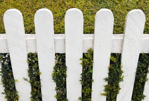 white fence with green hedge at a small house garden
